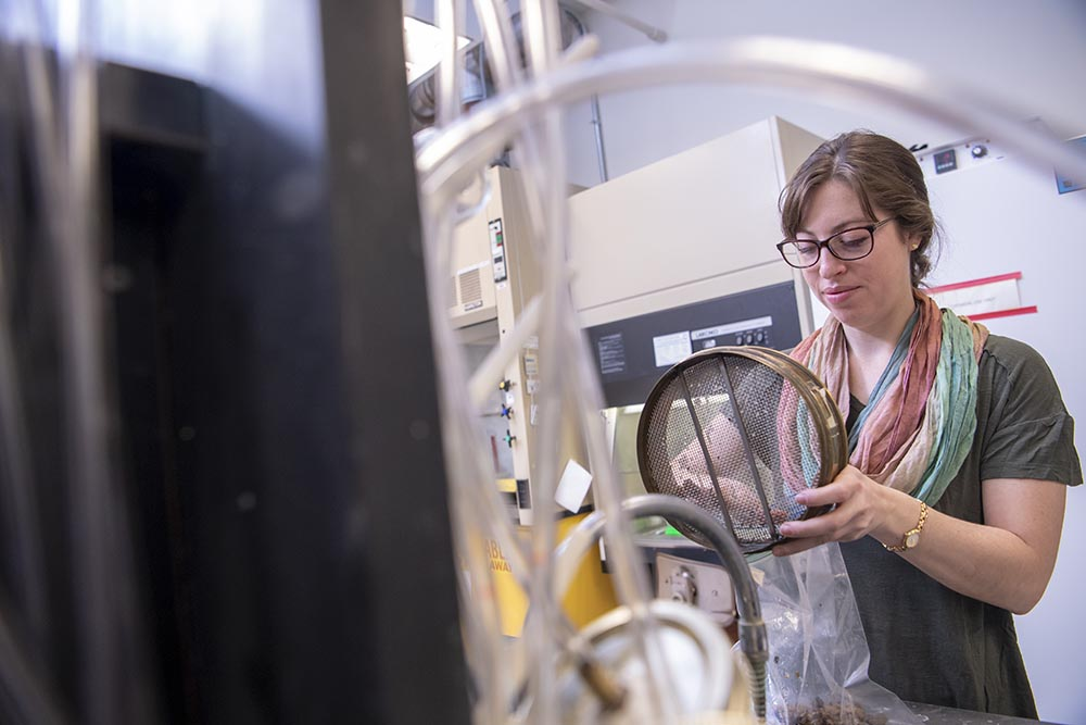 BioRenewable graduates can work with research and development engineers, process and industrial managers.