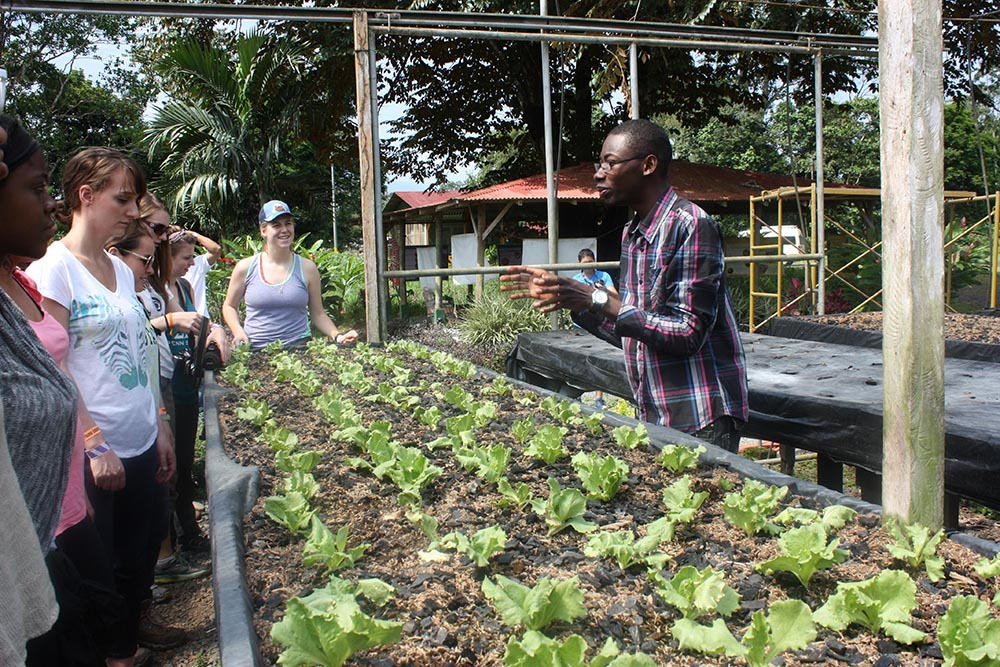 BioRenewable Systems major comes with exciting study abroad and foreign travel opportunities.