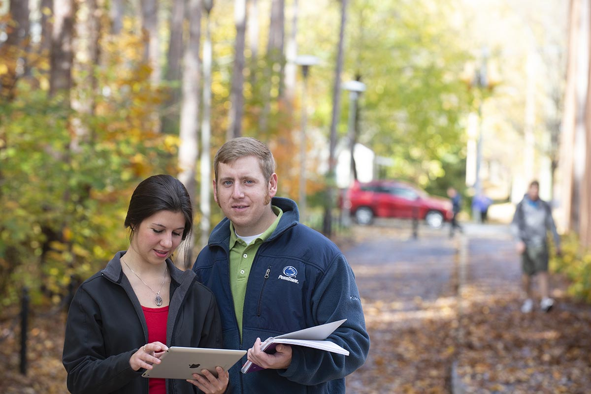 You will learn about the biological and ecological aspects of contemporary forestry.
