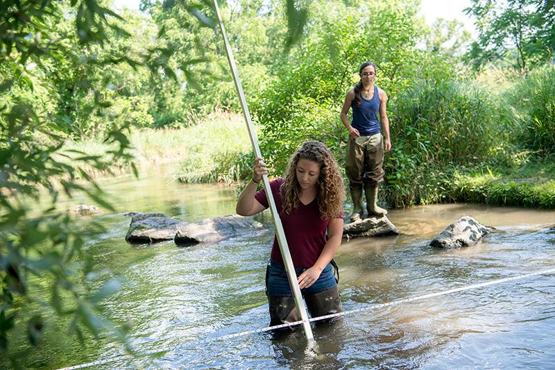 Students examining streams.