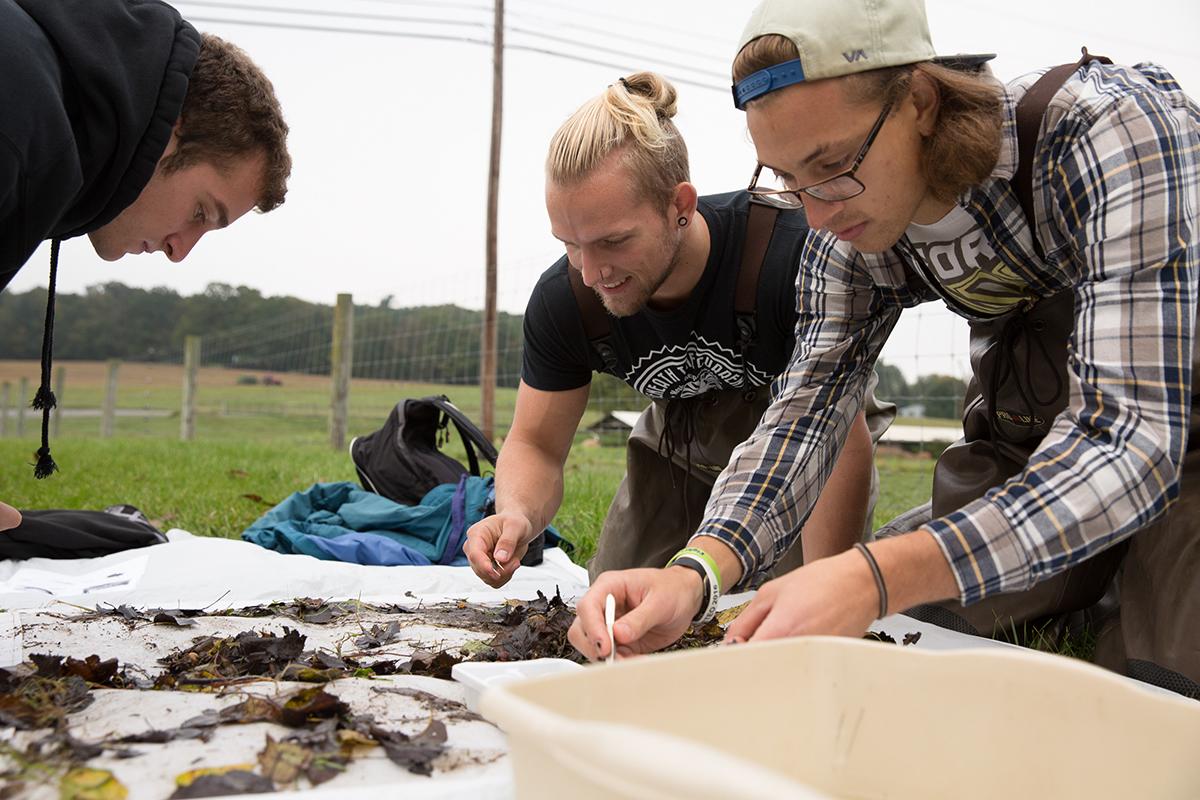 ERM students examining soil samples.