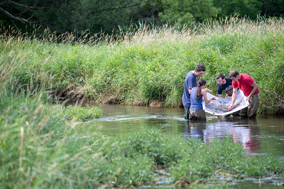 Students collecting water samples in the river.