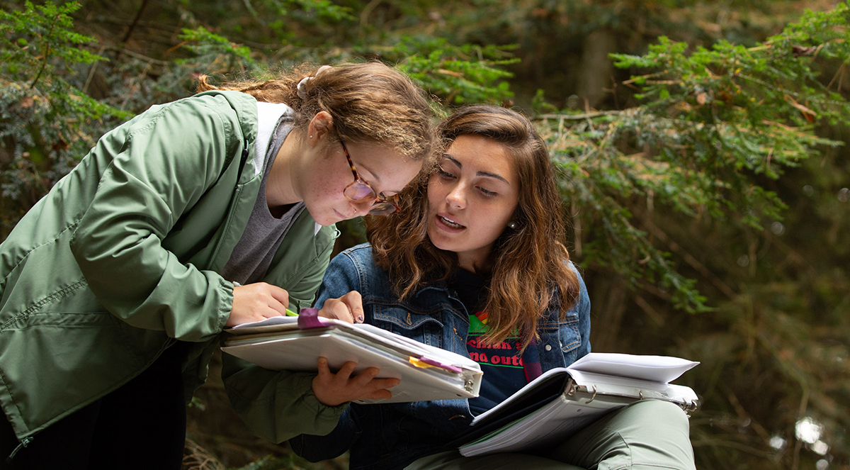 Penn State soil science students comparing notes on pine forest soil testing.