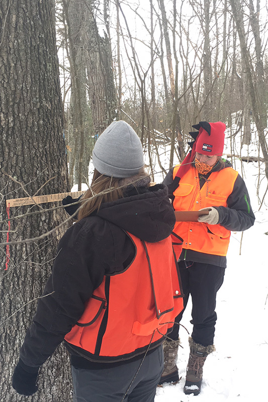 Students on a field training in forest ecosystem monitoring.