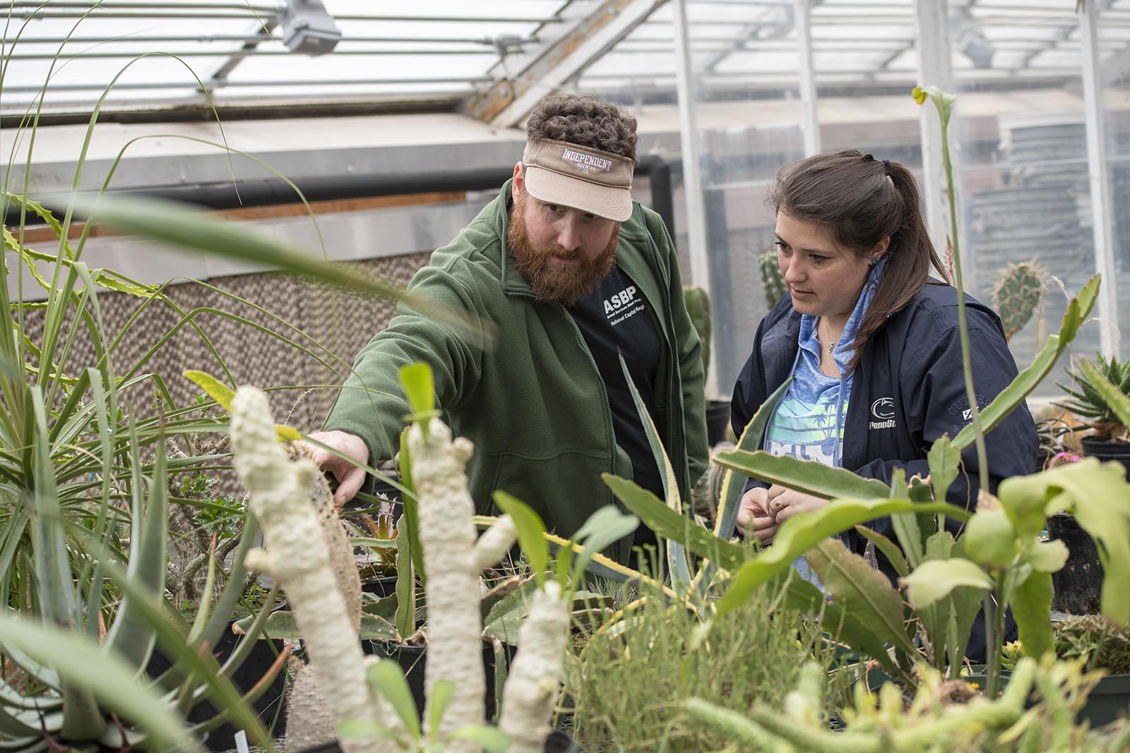 Penn State horticulture experts examining potted plants.