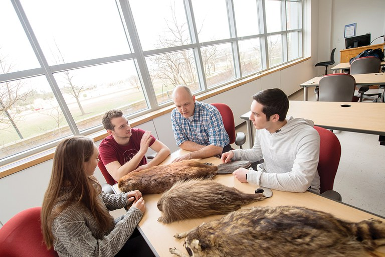 Studying the differences between racoons, beavers and other semiaquatic rodents at Penn State.