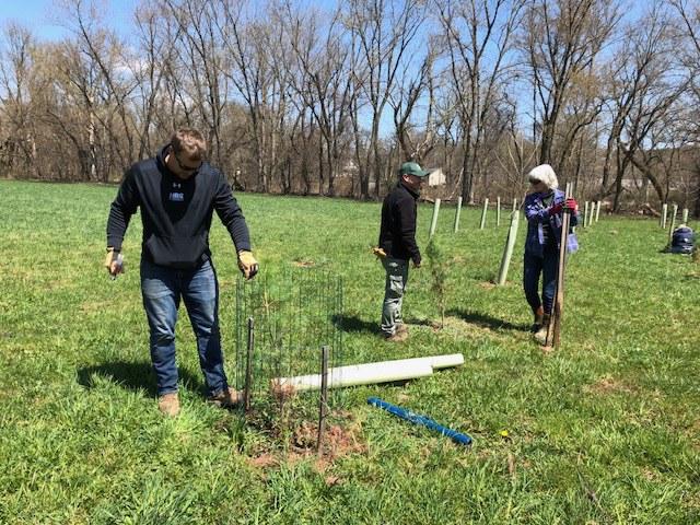 Volunteers plant trees.