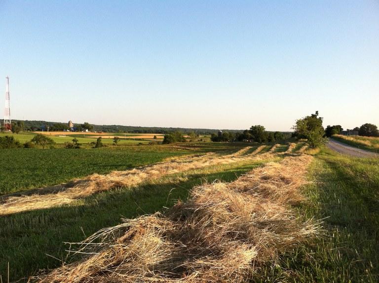 Pennsylvania Ag Fields