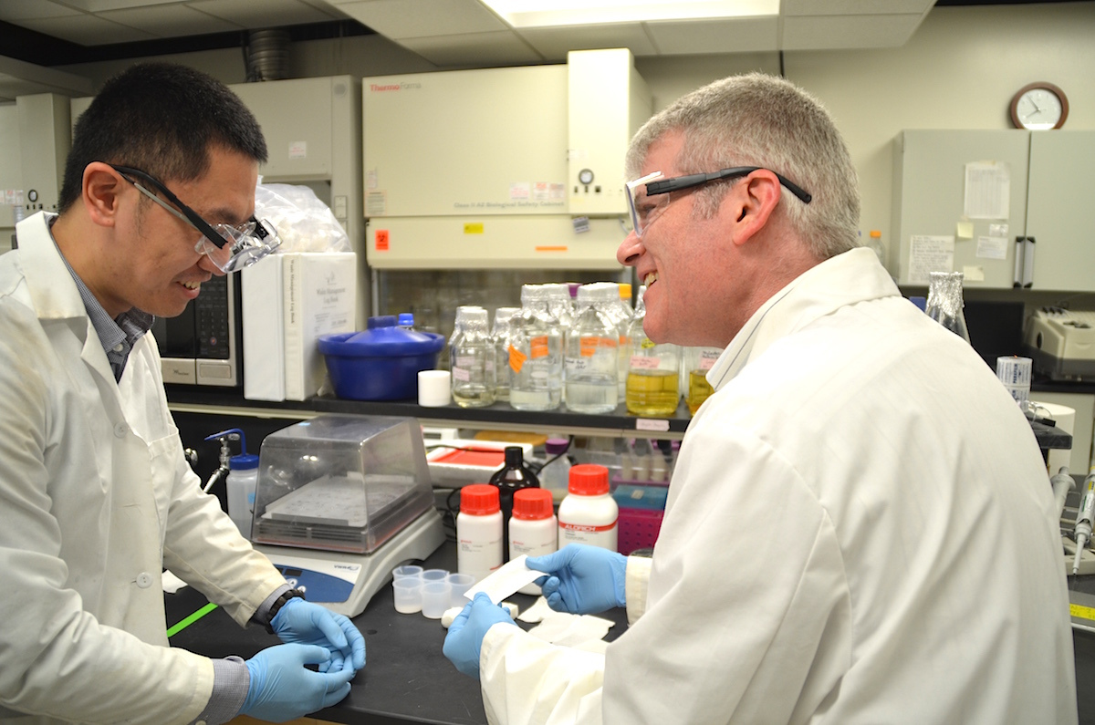 Dr. Jeffrey Catchmark, associate professor of agricultural and biological engineering, is working to commercialize his discovery of a promising, new medical foam to stop bleeding that can safely dissolve in the body. Here, Catchmark (right) works in the lab with Jingxuan Yang, a visiting scholar from Donghua University. (Photo by Martha Schupp)