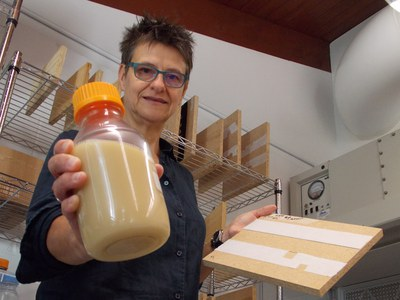Dr. Nina Jenkins, an entomologist and expert on safe pest-control methods, discovered that a formulation made from fungal spores effectively kills bedbugs. (Photo by Lisa Duchene)