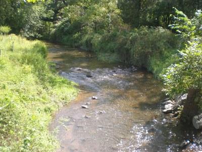 Water Quality Initiative