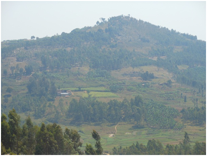 HydockRwanda4.png