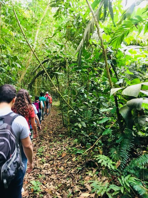 ERM students hiking in Costa Rica