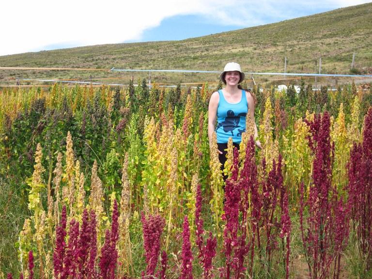 At the PROINPA Quinoa Breeding Center in Bolivia
