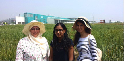 Touring a research field in Turkey with two agricultural engineers from the Sakarya Agricultural Research Institute