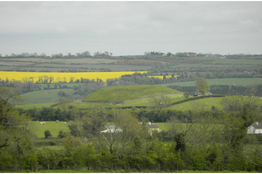 Knowth with a bright yellow canola field in the background