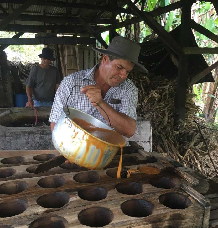 Nana's husband making fresh molds of sugar cane to sell in the markets.