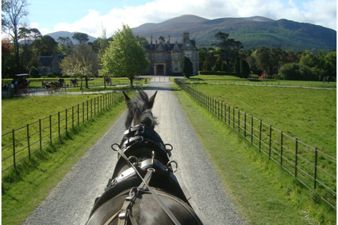 MuckRoss House and Gardens, Horse and Carriage ride with Black Beauty