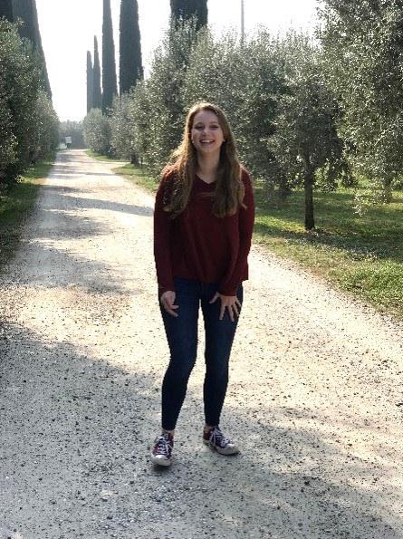 In an Olive Grove in Verona