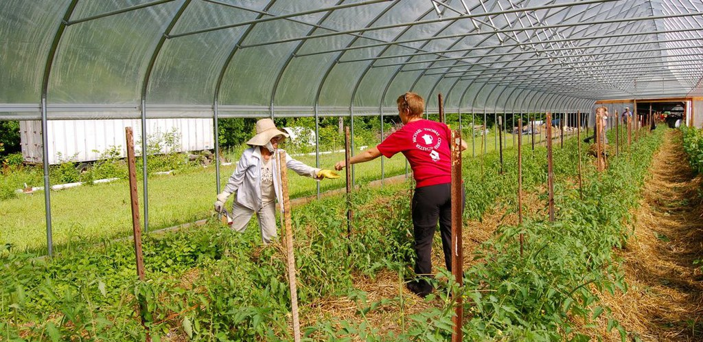 Village acres workers
