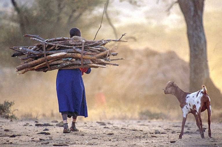 Firewood collection in African society is a gender issue because it is accomplished almost exclusively by women. Many women develop health issues as a result of carrying heavy loads many miles, day after day.