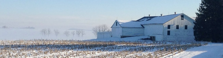 Foggy morning view of corn stubble and Kepler Barn, Russell Larsen Agricultural Research Farm at Penn State, Route 45 just east of the Pasto Agricultural Museum, January 2013.