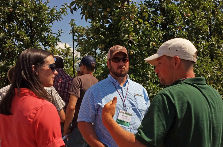 Discussing mechanization at a commercial orchard