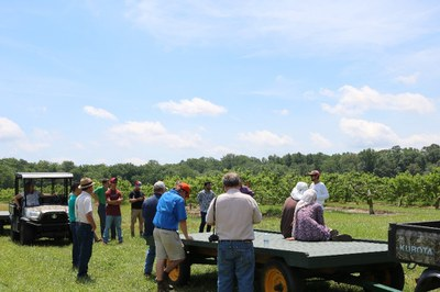 YGA members in the field visiting Bennett Orchards.