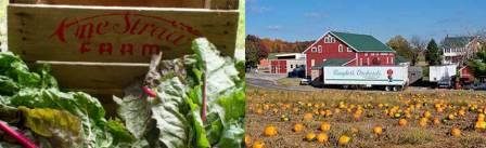 One Straw's operation has a large CSA component while Baugher's diversified into agritourism, a bakery and restaurant.